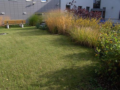 Dachbegr nung dachterrassen dachgarten arkadia for Gartengestaltung john