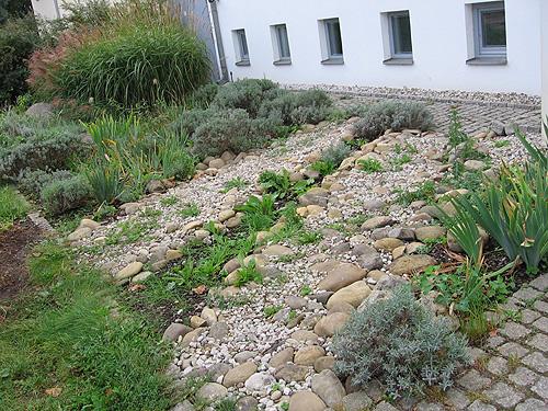 Arkadia Gartengestaltung Berlin - Leistungen: Vorgarten